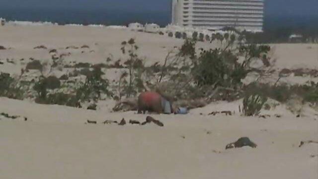 Seks pantai